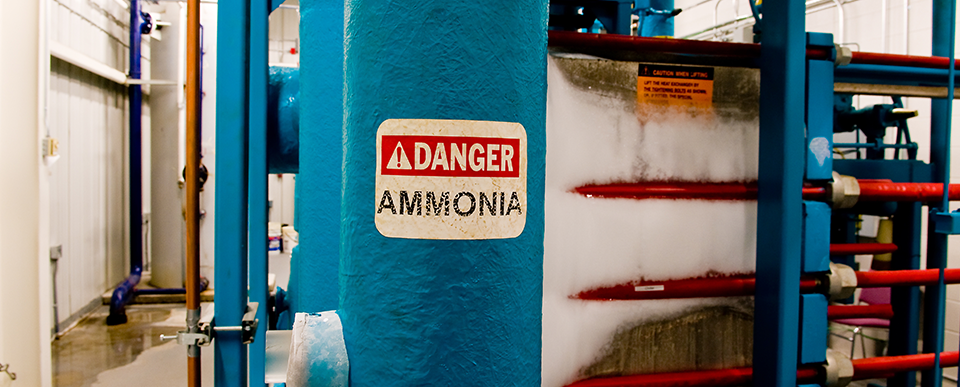Blog Images--ammonia danger